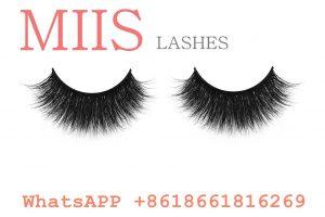 false lashes extension